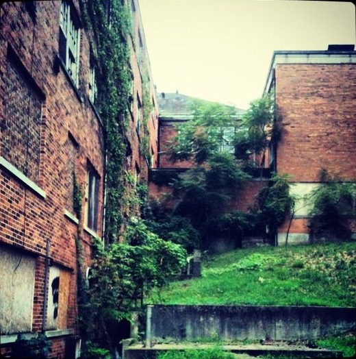 Abandoned Hospital in 3 Rivers Mi with overgrown vegetation beginning to cover walls and drives