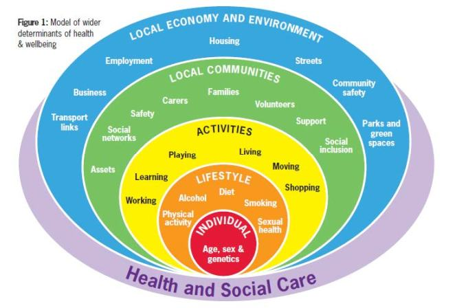 circles of factors that determine our health including local economy and environment, local community support system, personal activities, personal lifestyle choices, and age-sex-genetics